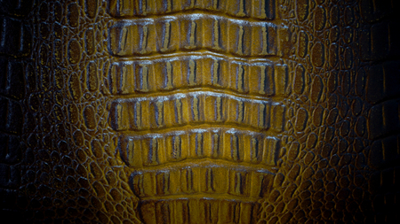 Brown leather texture photo