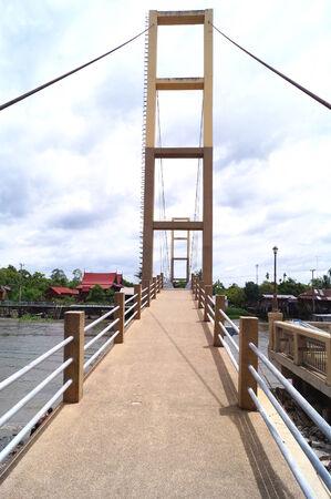 boardwalk trail: Wooden bridge lead to mangrove forest