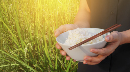 hand hold bowl of rice and chopstick