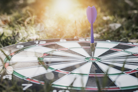 dart on board on grass background, concept as success and goal Фото со стока