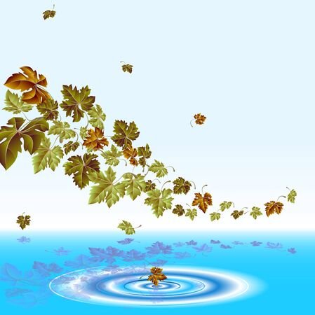 Autumn leaves falling in to the water, vector Vector