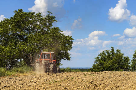 Tractor plowing the land photo