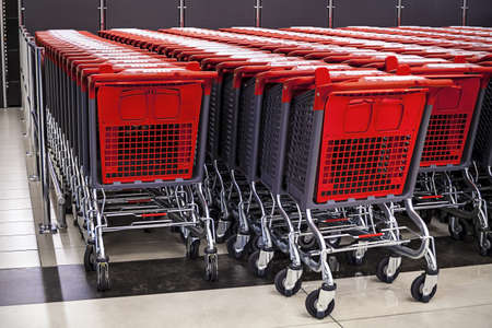 rows of shopping carts in the store Stock Photo - 19917591