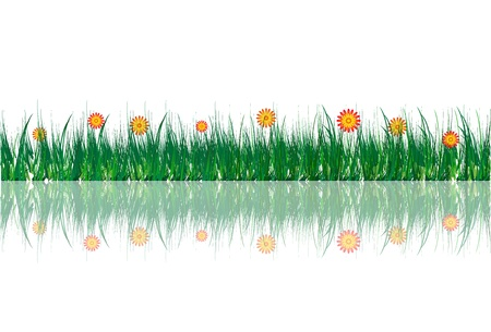yelow: grass with flowers Illustration