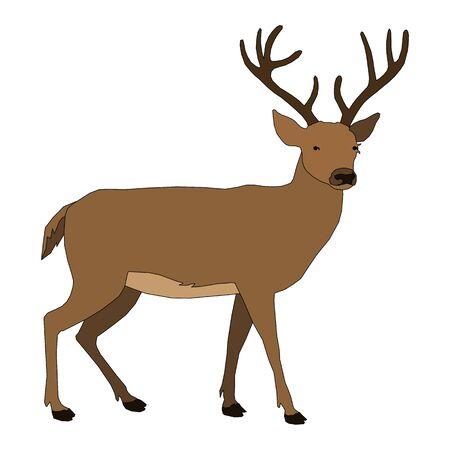 jachere: animaux - cerfs Illustration