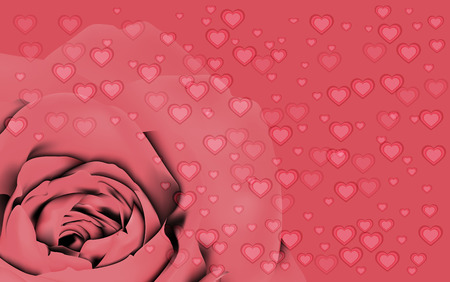 centifolia: Valentine background, vector Illustration