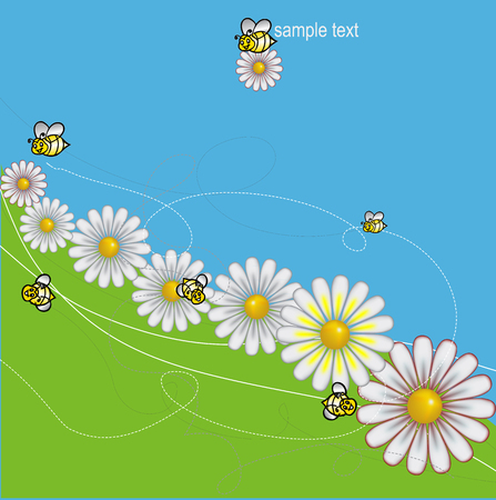 mead: DAISIES meadow with bees background, vector
