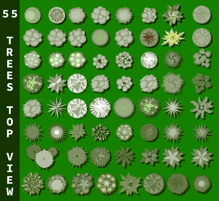 Different trees top view. View from above set for architectural and landscape natural green space design. Vector 向量圖像