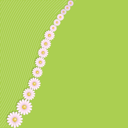 Floral background with daisies. Invitation, print card, blank vector