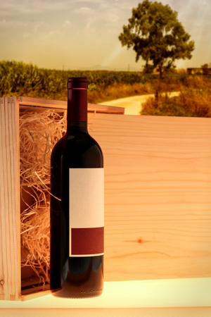 cabarnet: Wooden case with red wine bottle on countryside