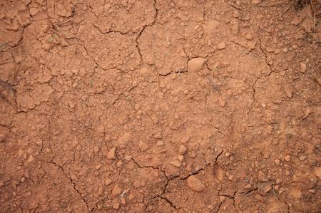 een beeld van de gebarsten grond met minder planten