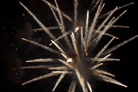 a picture of a beautiful firework in dark sky