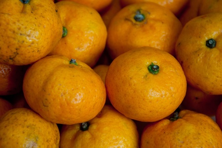Mandarin orange, Citrus reticulata, Blanco Stock Photo - 11360675
