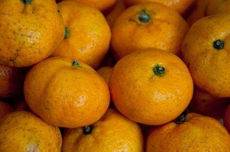 citrus reticulata: Mandarin orange, Citrus reticulata, Blanco Stock Photo