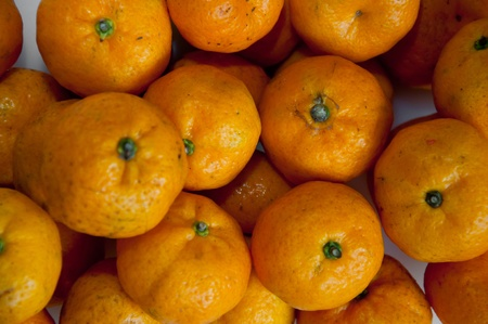 Mandarin orange, Citrus reticulata, Blanco Stock Photo - 11361194