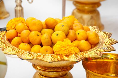 Mandarin orange, Citrus reticulata, Blanco in Thai Gold Plate Stock Photo - 11669878
