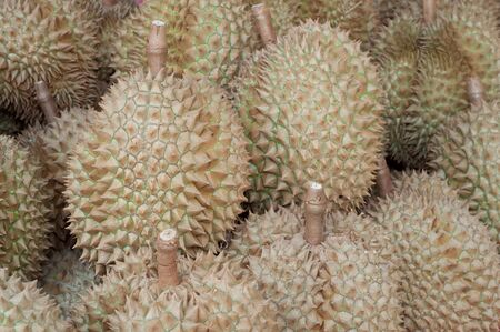 fresh durians fruits