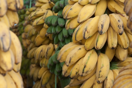 Saba Banana - Musa (ABB Group)