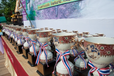 YALA, THAILAND - APRIL 1: Trophy cups for mountain bike winners in Krongpinang Mountain Bike Racing on Apr 1, 2012 at  Yala Krongpinang district office, Thailand