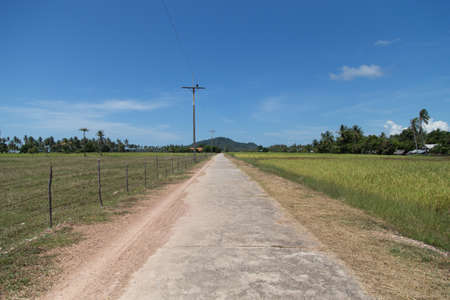 Road along Rice field at Koh Sukorn Island in Trang, Thailand