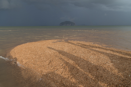 Golden Scale Dragon Spine Beach in Palian, Trang can see when low tide - Unseen Thailand