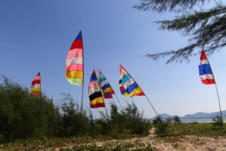 Colorful Flag on wind at the beach with pine tree