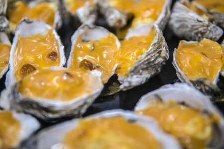 Oysters in a pan in a creamy sauce and cheese. Against a table background