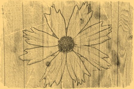 Old Photo Flower on Wood Art Design Abstract photo