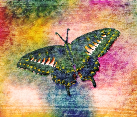 Butterfly Painting Art Monet Stock Photo - 14564117