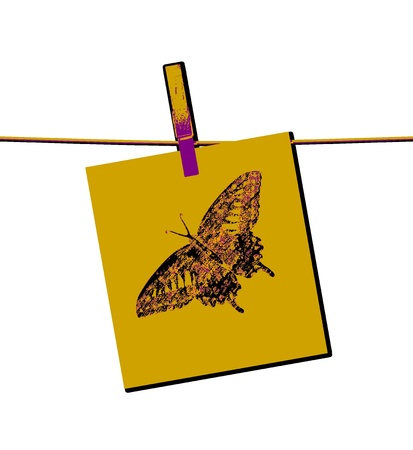 Butterfly Painting Art Stock Photo - 14564041