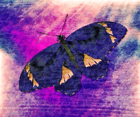 Butterfly Painting Art Monet Stock Photo - 14564098