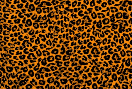 Art leopard fur textures background for design photo