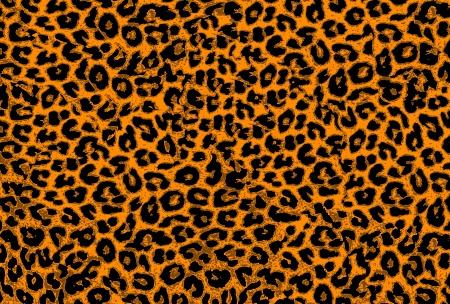 Art leopard fur textures background for design