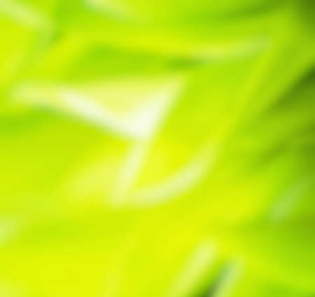 Green Textures abstract background photo