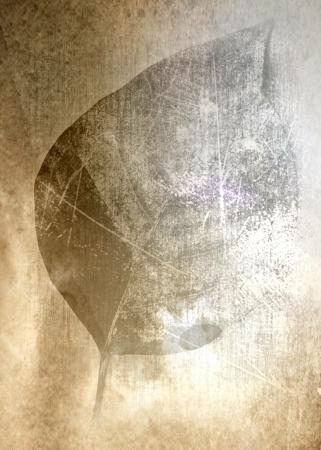 текстуры: Старый фотобумага искусство лист фон гранж текстур
