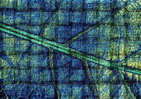 art leaf grunge vintage texture background photo