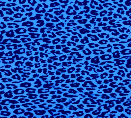 Leopard Print Fur Skin Stock Photo - 15260319