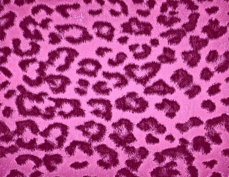 Leopard Print Fur Skin photo