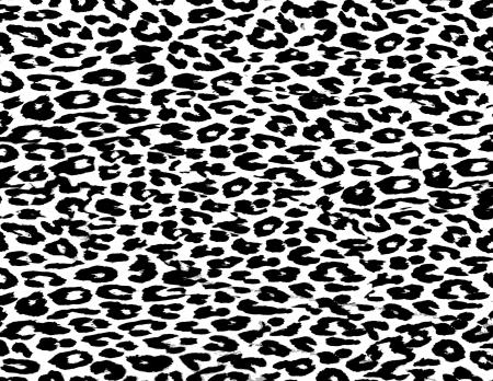 vulgar: Leopard Print Skin Fur