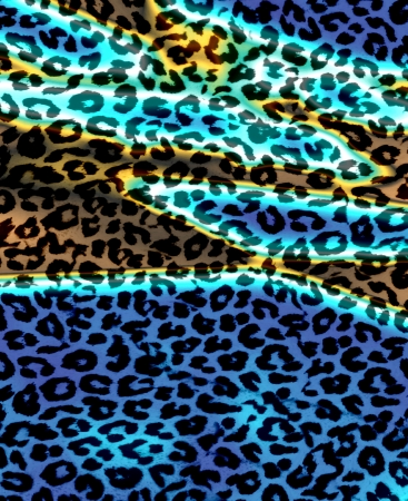 Retro Leopard Print Skin Fur  Stock Photo - 15348762