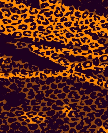 Retro animal print fur skin of leopard  photo