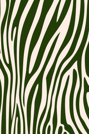 Green zebra skin animal print pattern photo