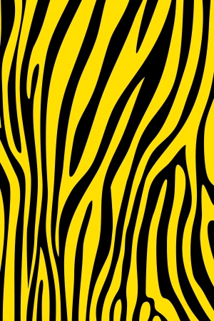 Yellow and black zebra skin animal print pattern Stock Photo - 15447580