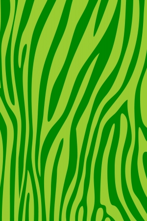 Lime green zebra skin animal print pattern photo