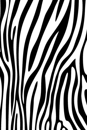 Black and white zebra skin animal print pattern Stock Photo