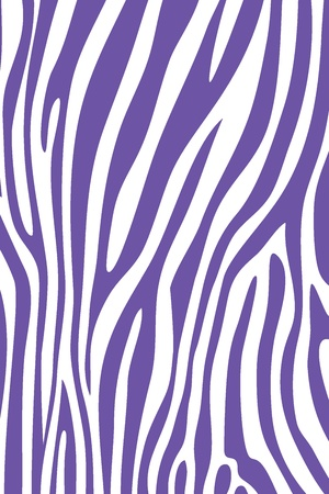 Purple and white zebra skin animal print pattern Stock Photo - 15447577