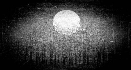 nuit hiver: Pleine lune dans la nuit d'hiver, d'art noir et blanc Banque d'images