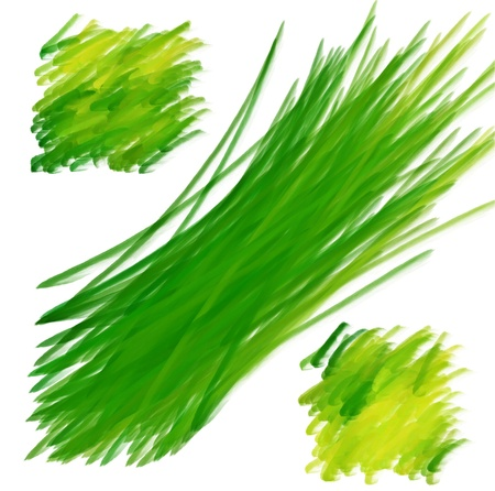 paint brush texture spot blotch isolated Stock Photo - 17496877