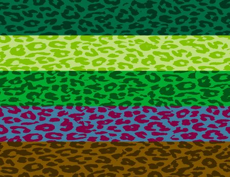 Retro Colorful Leopard Print Skin Stripe Pattern  photo