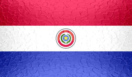 standard steel: Paraguay flag on metallic metal texture